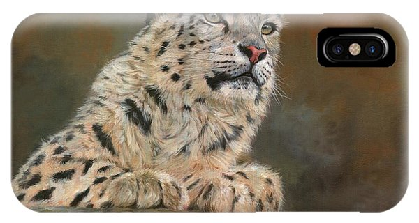 Snow Leopard iPhone Case - Snow Leopard On Rock by David Stribbling
