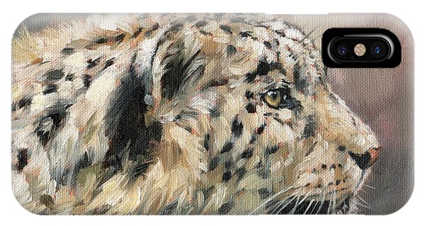 Snow Leopard iPhone Case - Snow Leopard Study by David Stribbling