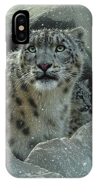 Snow Leopard - The Fortress IPhone Case