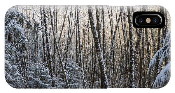 Snow On The Alders IPhone Case