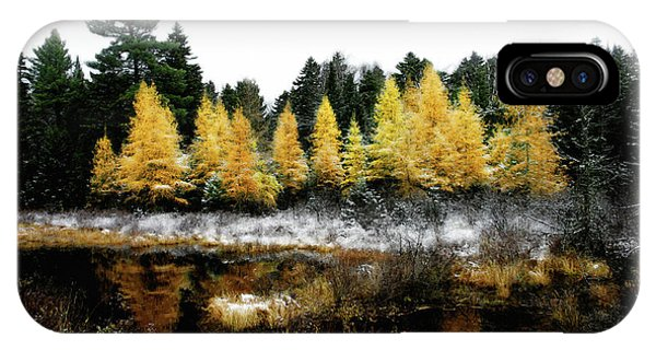 IPhone Case featuring the photograph Snow Paints Larch Grove by Wayne King
