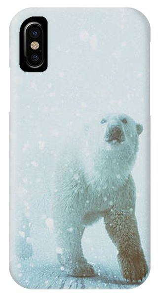 Bear iPhone Case - Snow Patrol by Katherine Smit