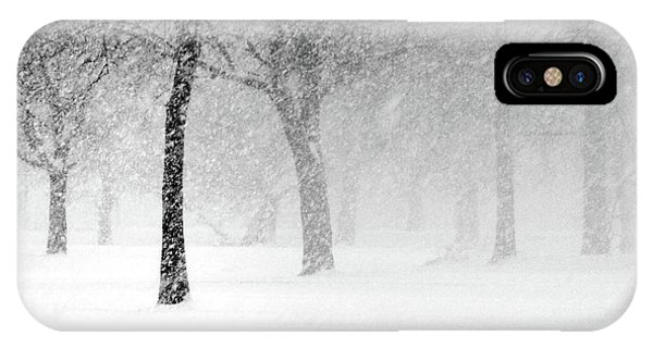 Snow Storm At Starved Rock IPhone Case