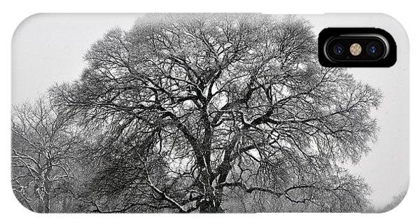 Snow Tree 2 IPhone Case