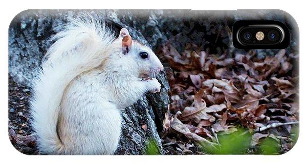 Snow White......squirrel, IPhone Case