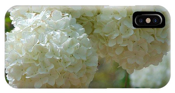 Snowball IPhone Case