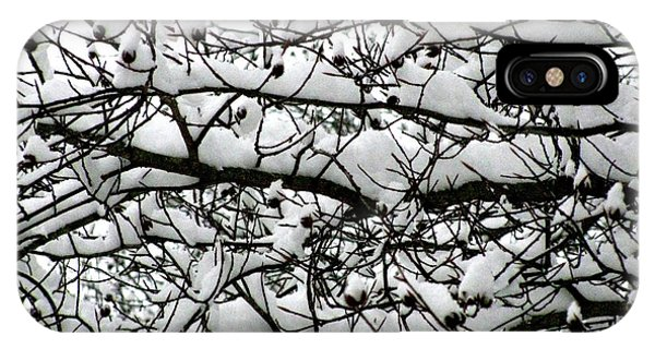 Snowfall On Branches IPhone Case