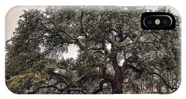 Snowfall On Emancipation Oak Tree IPhone Case