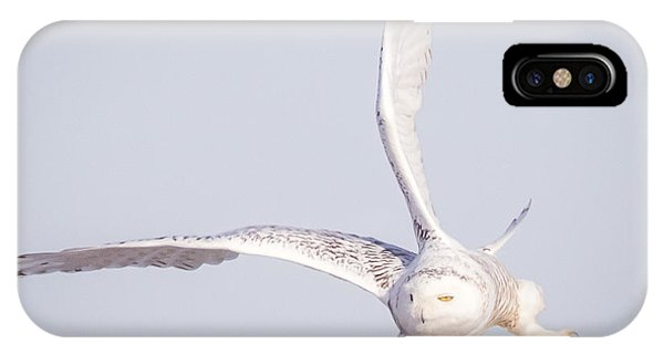 Snowy Owl Flying Dirty IPhone Case