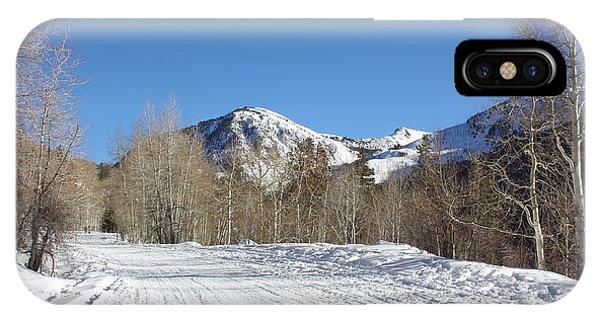 Snowy Aspen IPhone Case