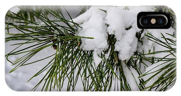 Snowy Branch IPhone Case