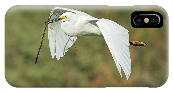 Snowy Egret 4786-091017-1cr IPhone Case