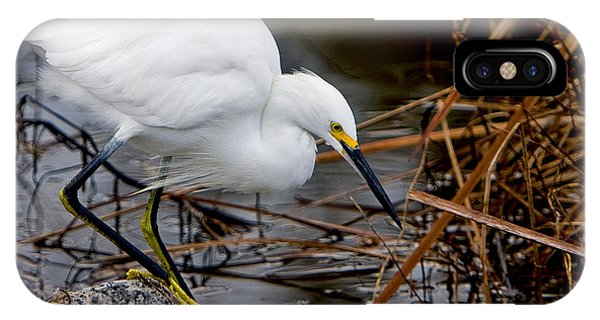 Snowy Egret Egretta IPhone Case