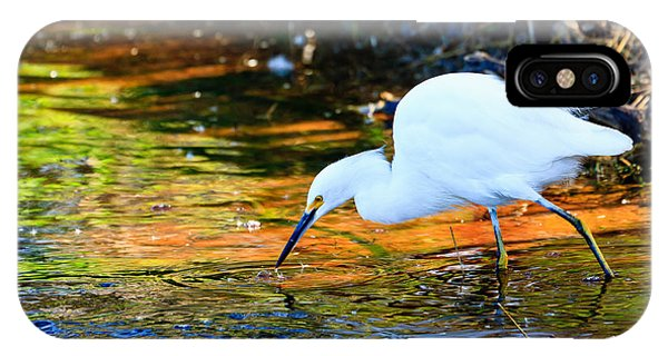 Snowy Egret Hunting 2 IPhone Case
