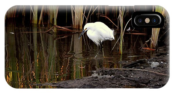 Snowy Egret In Late Afternoon IPhone Case