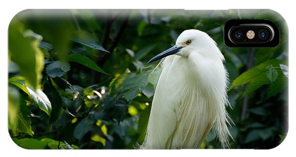 Snowy Egret In The Trees IPhone Case