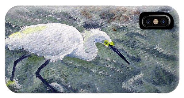 Snowy Egret Near Jetty Rock IPhone Case