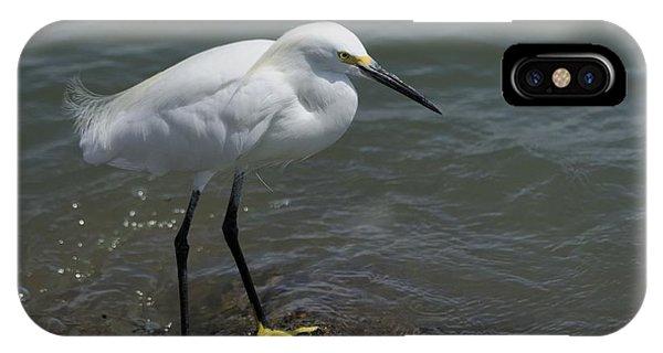Snowy Egret On Rock IPhone Case
