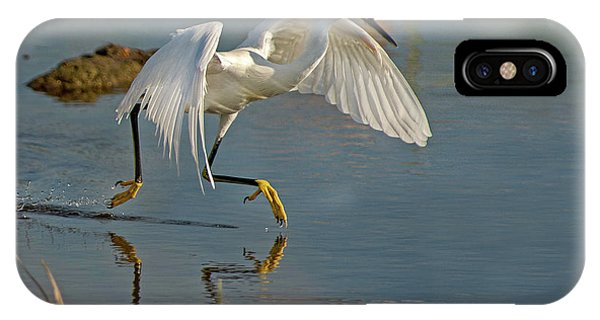 Snowy Egret On The Move IPhone Case