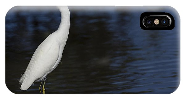 Snowy Egret Perched On A Rock IPhone Case
