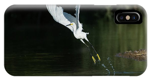 IPhone Case featuring the photograph Snowy Egrets 080917-4290-1cr by Tam Ryan