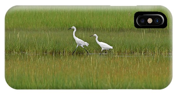 Snowy Egrets IPhone Case