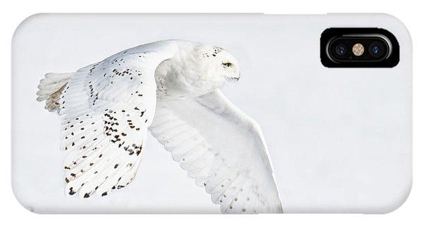 Snowy Flight IPhone Case