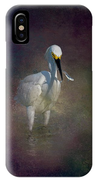 Tidal Marsh iPhone Case - Snowy Lunch by Marvin Spates