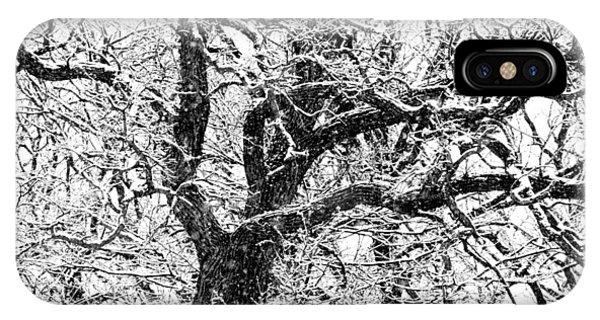 Snowy Oak IPhone Case