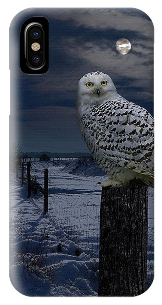 Snowy Owl On A Winter Night IPhone Case