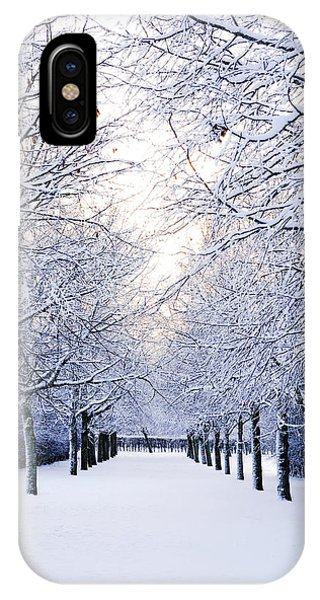Snowy Pathway IPhone Case