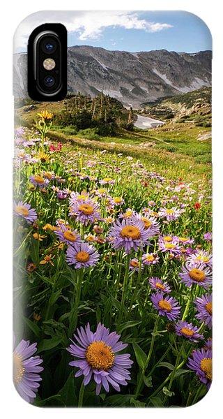 Snowy Range Flowers IPhone Case
