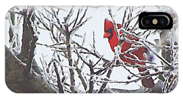 Snowy Red Bird A Cardinal In Winter IPhone Case