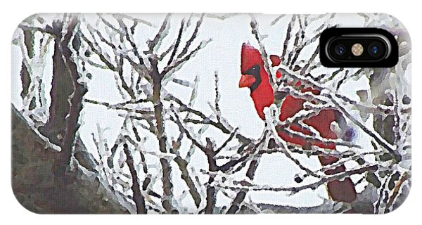 Snowy Red Bird A Cardinal In Winter IPhone Case
