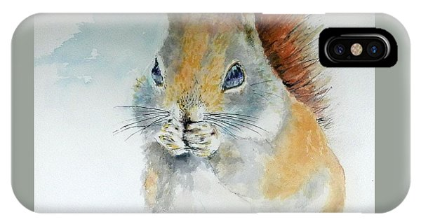 Snowy Red Squirrel IPhone Case