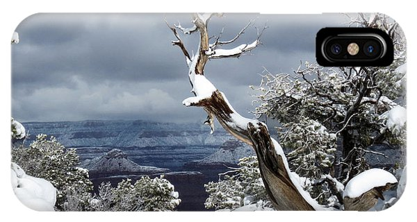 Snowy View IPhone Case