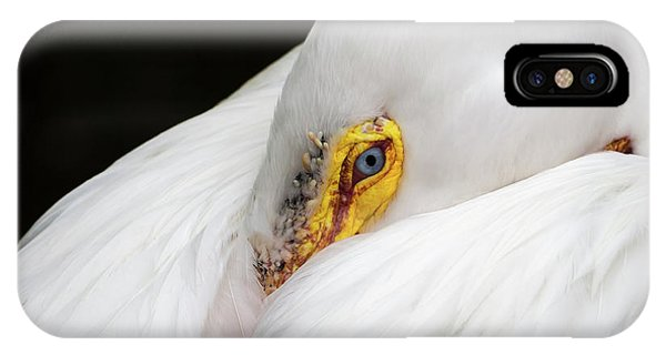 IPhone Case featuring the photograph Snuggled White Pelican by Penny Lisowski