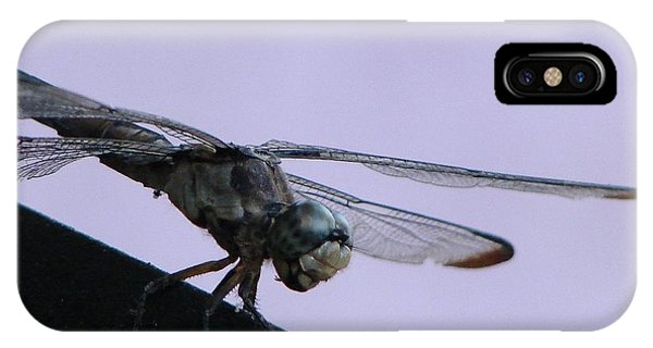 So Many Bugs So Little Time IPhone Case