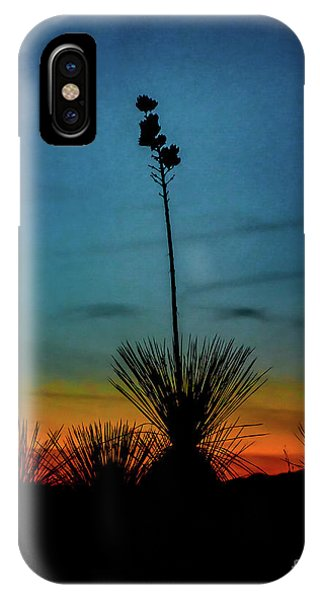 Soaptree Yucca At Sunset IPhone Case
