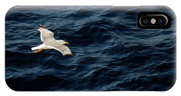 Soaring Above The Deep Blue Sea IPhone Case
