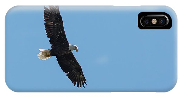 Soaring Bald Eagle IPhone Case