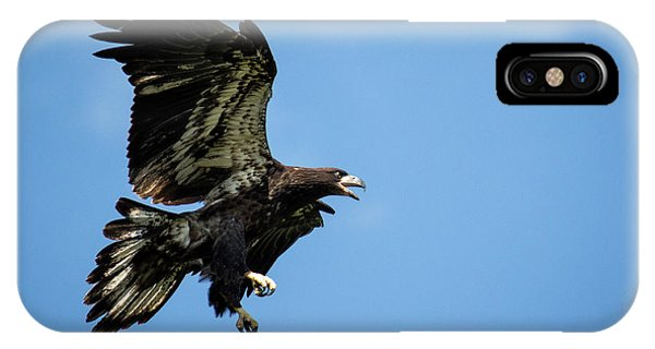 Soaring IPhone Case