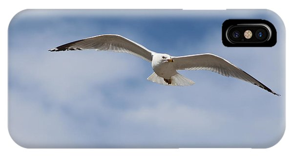 Soaring Free IPhone Case