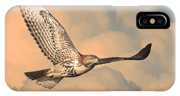 Soaring Hawk IPhone Case