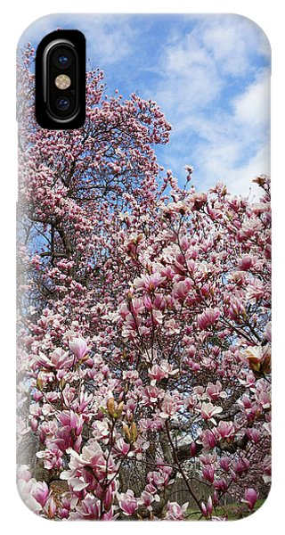 Soaring Magnolia IPhone Case