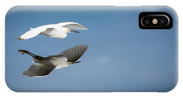Soaring Over Still Waters IPhone Case