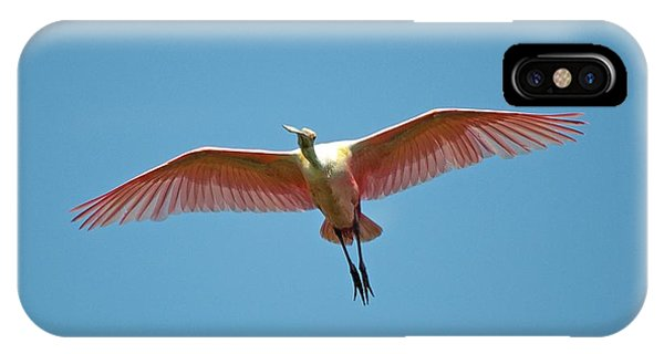 Soaring Roseate Spoonbill IPhone Case