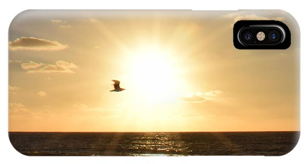Soaring Seagull Sunset Over Imperial Beach IPhone Case