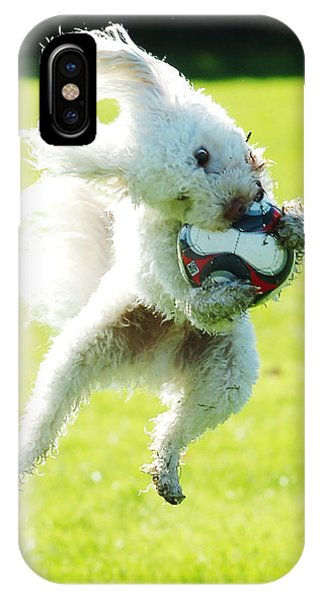 Soccer Dog-3 IPhone Case