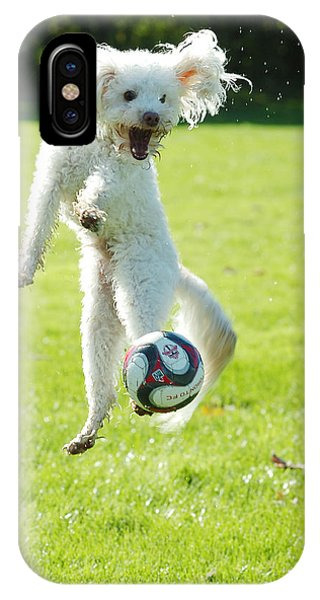 Soccer Dog-5 IPhone Case